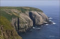 Cape-Saint-Marys;Newfoundland;Scenic;Cape-Saint-Marys;Breeding-Behavior;Breeding