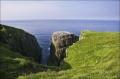 Cape-Saint-Marys;Newfoundland;Scenic;Cape-Saint-Marys;Breeding-Colony;Breeding-B