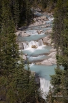 Alberta;Canada;Jasper-National-Park;Nigel-Creek