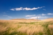 Nebraska;Sandhills;Scenic;Valentine-National-Widlife-Refuge;Wetland;Grass