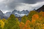Aspen;Aspens;Bishop-Creek-Canyon;California;Eastern-Sierra;Fall-Color;Fall-Folia