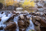 Bishop-Creek-Canyon;California;Eastern-Sierra;Fall-Foliage