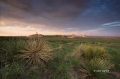 Pawnee-Buttes;Pawnee-National-Grasslands;Grasslands;Scenic;Sunset;Clouds;Colorad