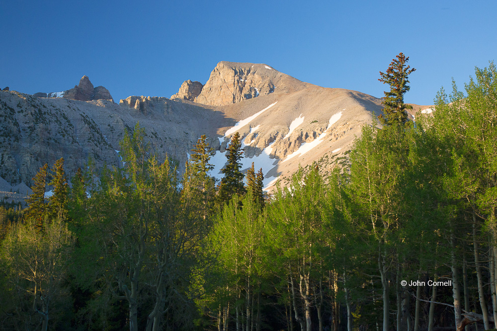 Blue Sky;Great Basin National Park;Mountains;Nevada;Snow;Sunrise;Trees;Wheeler Peak