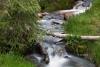 Grass;Great-Basin-National-Park;Lehman-Creek;Log;Mountain-Brook;Mountains;Nevada