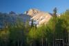 Blue-Sky;Great-Basin-National-Park;Mountains;Nevada;Snow;Sunrise;Trees;Wheeler-P