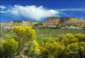 New-Mexico;Rabbit-Brush;Blue-Sky;Clouds;Scenic;Butte;Buttes