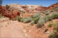 Wire-Pass-Trail;Buckskin-Gulch;Grand-Staircase-Escalante;Vermillion-Cliffs;Vermi