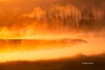 Fog;Madison-River;Mist;Sunrise;Yellowstone-National-Park;water