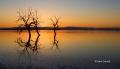 Salton-Sea;Sea;Sunset;Reflection;Scenic;Southwest-USA;Silhouhette