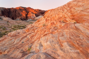 Desert;Desert-Scenic;Desolation;Erosion;Nevada;Red-Rock;Sand;Sandstone;Sunrise;V