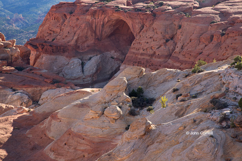 Arch;Canyon;Capitol Reef National Park;Cassidy Arch;Desert;Erosion;Grand Gulch;Red Rock;Red Rocks;Sandstone;Utah;arid;dry